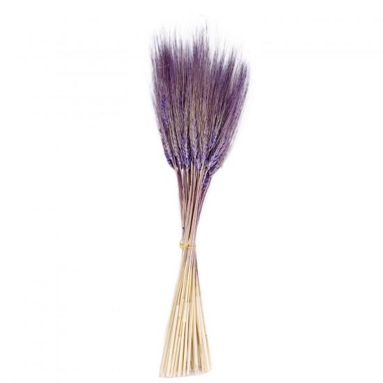 Kuru Çiçek Doğal Başak Buğday Başağı  45 CM (1 Demet)