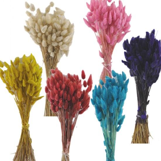 Kuru Çiçek Doğal Kurutulmuş Çiçek Renkli 35 Cm (1 Demet)