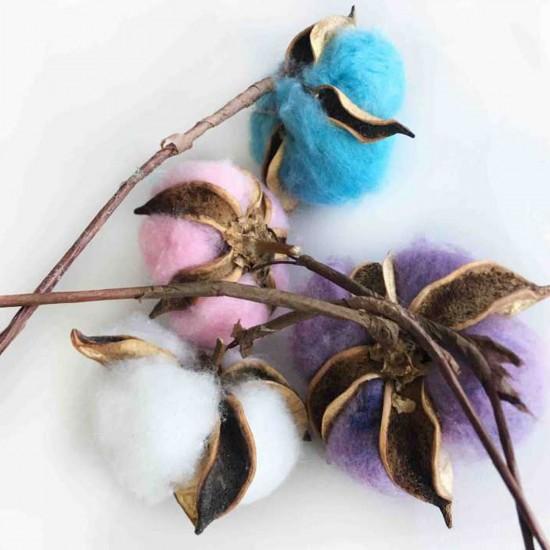 Kuru Çiçek Doğal Kurutulmuş Pamuk Kozası (10 Adet)