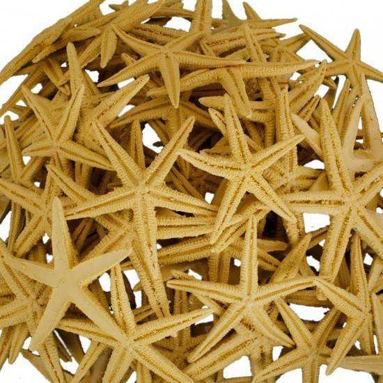 Polyester Deniz Yıldızı 6 CM - 9 CM (50 Adet)